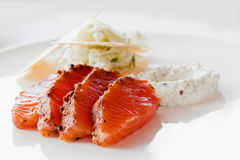 Marinated salmon meal Stock Image