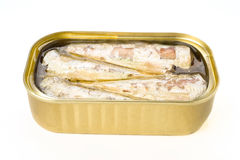 Marinated sardine tin Stock Image