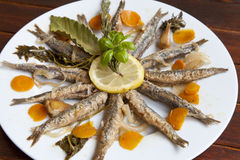 Marinated sardines with Mediterranean herbs Royalty Free Stock Images
