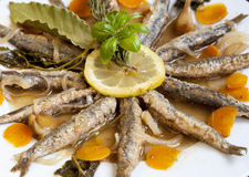 Marinated sardines with Mediterranean herbs Stock Image