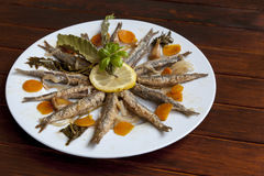 Marinated sardines with Mediterranean herbs Stock Images