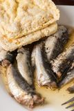 Marinated sardines in the oil served with corn bread Royalty Free Stock Photos