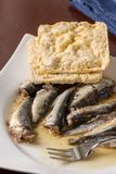 Marinated sardines in the oil served with corn bread Stock Images