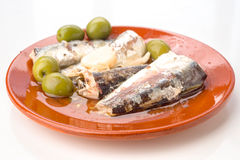 Marinated sardines on plate Royalty Free Stock Image