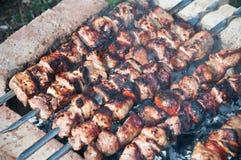 Marinated shashlik, barbecue stock photo