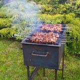 Marinated shashlik preparing on barbecue grill Royalty Free Stock Photography