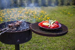 Marinated shashlik preparing on a barbecue grill over charcoal. Royalty Free Stock Image