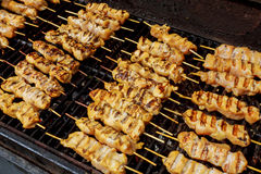 Marinated shashlik preparing on a barbecue grill over charcoal. Royalty Free Stock Photos