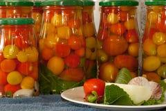 marinated tomater Fotografering för Bildbyråer