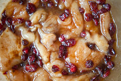 Marinated turkey meet with cranberry Stock Photos