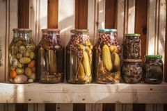 Marinated vegetables in jars. Marinated mushrooms, cucumbers and tomatoes in jars Royalty Free Stock Photo