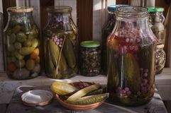 Marinated vegetables in jars. Pickled cucumbers with red currants. Ecological product Stock Image