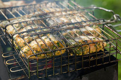 Marinated white fish on the grill Royalty Free Stock Image