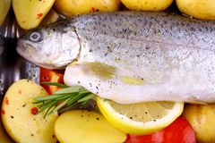 Marinated whole trout with red pepper, potato and lemon Royalty Free Stock Photos