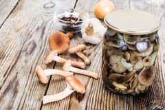 Marinated Wild Mushrooms Honey Agaric on Rustic Wooden Backgroun Royalty Free Stock Photo
