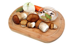 Marinating edible mushrooms Stock Images