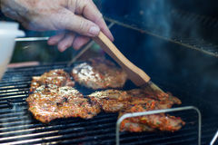 Marinating meat during grilling. Pork on the grill. Barbecue in the garden. Hand with a brush in motion Stock Photography