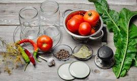 Marination des tomates de récolte Photographie stock libre de droits