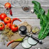 Marination des tomates de récolte Image stock