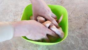 Marination du poulet Les mains marinent le poulet Ailes de poulet épicées Viande de poulet clips vidéos