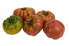 Marinda tomatoes Royalty Free Stock Images
