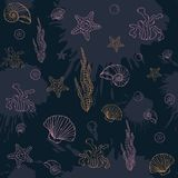 Marine algae,seamless pattern Royalty Free Stock Photography