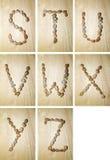 Marine alphabet S-Z royalty free stock photography
