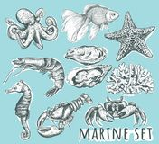 Marine Animals Collection illustration libre de droits
