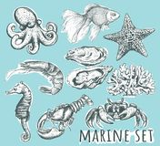 Marine Animals Collection illustration de vecteur