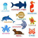 Marine animals colorful icons in flat style. Cartoon marine animals named flat icons with atlantic crab, jumping dolphin, swimming turtle, octopus, jellyfish Royalty Free Stock Image