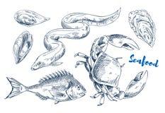 Marine Animals différente comme illustration de fruits de mer illustration libre de droits