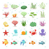 Marine animals, fishes collection and underwater plants. Aqua wild fauna. Vector illustration. Fish and fauna underwater, nature octopus and sea snail Stock Photo