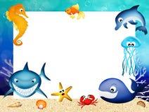 Marine animals frame Stock Photos