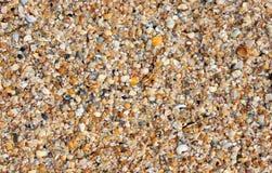 Marine background Stock Photography