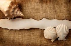 Marine background. Stock Image