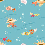Marine background with seashells and starfish Royalty Free Stock Photography