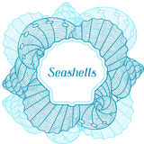 Marine background with stylized seashells. Design for cards, covers, brochures and advertising booklets Stock Image