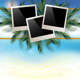 Marine background with white sand and a place for your Stock Images