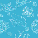 Marine background. White silhouettes on blue. seashells, corals and starfish. Marine background Seamless pattern. White silhouettes on blue. seashells, corals Stock Photos