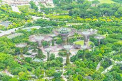 MARINE BAY / SINGAPORE, 30 APR 2018 - Beautiful view of Gardens By the Bay from Marina Bay Sands Observation deck stock images
