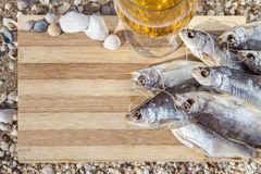 Marine beer culinary still life Stock Images