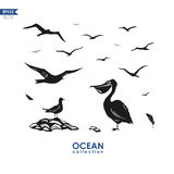 Marine birds silhouettes royalty free illustration