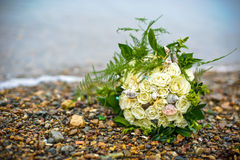 Marine bouquet on the rocky shore Royalty Free Stock Photo