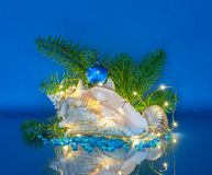 Marine Christmas Decoration med felika ljus Royaltyfria Foton