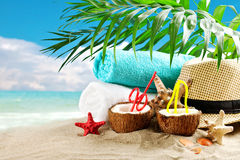 Marine composition of coconut and palm leaves on the background of beautiful sea landscape. Suitable as a card Royalty Free Stock Image