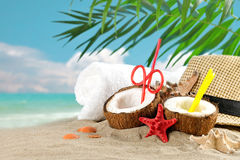 Marine composition of coconut and palm leaves on the background of beautiful sea landscape. Suitable as a card Stock Images