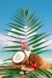 Marine composition of coconut and palm leaves on the background of beautiful sea landscape. Suitable as a card Royalty Free Stock Images