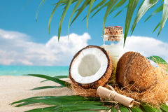 Marine composition of coconut and palm leaves on the background of beautiful sea landscape. Suitable as a card Stock Photos