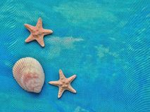 Marine composition in turquoise textile. Royalty Free Stock Photography
