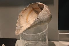 Marine Conch-Shell Dipper at Fort Ancient Museum display. stock image